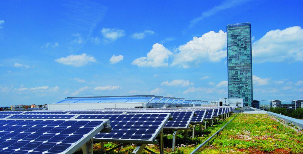 Solar Panel on Green Roof